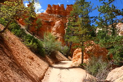 IMG_1889 (Ichiban7too) Tags: bryce national park canyon utah nature hoodoo red sandstone