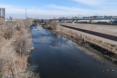 Ah the South Platte River, one of the best-known landforms in all of Denver. (Tim Kiser) Tags: 2018 20180209 canadageese cityandcountyofdenver colorado coloradofrontrange coloradolandscape denver denvercolorado denverlandscape february february2018 fivepoints fivepointsneighborhood frontrange globeville globevilleneighborhood img7091 missouririverdrainagebasin missouririverwatershed parkavenue parkavenuewest platteriverdrainagebasin platteriverwatershed southplatteriver southplatterivertrail bridges centralcolorado creek creeklandscape geese landscape mostlysunny muddywater plume river riverlandscape riverinelandscape stream streamlandscape urbanlandscape urbanriver urbanstream viewfromabridge waterpollution winter winterlandscape