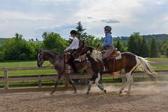 JBC_5607.jpg (Jim Babbage) Tags: krahc horseshow appaloosa horses 2018 bethany