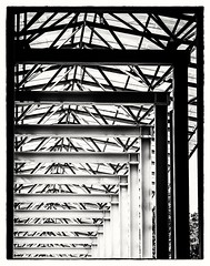Ordered (Andy J Newman) Tags: monochrome om archetecture art artistic arty blackandwhite deutschland germany munich olympus order pattern repeat repetition silverefes staatskanziel münchen bayern de