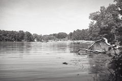 View from the shoreline (John's Vintage Cameras) Tags: 1930s vintage analog welta triplet film foldingcamera 6x9 madeingermany rodenstock ilford minnesota