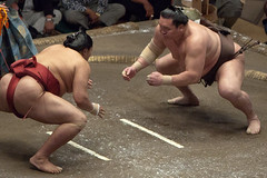20180518_IMG_8663 (koen@jp) Tags: sports スポーツ sumo 相撲 大相撲 2018 ozumou ryogoku 両国 両国国技館 ryōgoku kokugikan 白鵬 hakuhou モンゴル mng mongolia