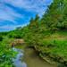 Franklin Creek