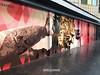 Una Tigre in città (iw2ijz) Tags: murales milano milan italia italy lombardia iphonex apple iphone streetphotograpy street tigre sound