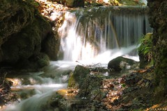 #waterfall #nature_photography #nature #nature #photography #photo_art #photographyoftheday #photo #photooftheday #photo #photoshoot #photo #flickr (salam.jana) Tags: waterfall naturephotography nature photography photoart photographyoftheday photo photooftheday photoshoot flickr