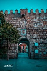 Entrada al Patio de Banderas. (J_M_Photo) Tags: medieval entrada muralla sevilla streetphotography street streetview spain streetstyle streetshot streetmagazine streetphoto bestofday colours colorful picoftheday architecture architecturephotography wall nikon andalucia city citystreets