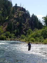 20180605_120704 (Red's Fly Shop) Tags: naches river wading wadefishing