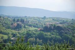 Сієна, Тоскана, Італія InterNetri Italy 217 (InterNetri) Tags: qntm сієна тоскана італія internetrinet