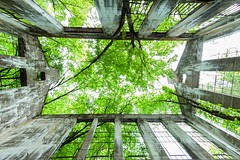 Return to Nature (Karen_Chappell) Tags: travel quebec gatineaupark trees wideangle fisheye canonef815mmf4lfisheyeusm concrete ruins building architecture windows green canada bricks stone old