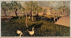 minamikaze180602-1 (minamikaze2010) Tags: tree furniture keke ~uber~ fameshed grass con 22769 tlc thearcadegacha felix river brigde {anc} gacha garden