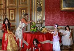 Château de Vaux Le Vicomte. (jmboyer) Tags: vauxlevicomte châteaudevauxlevicomte castle france maincy costume journéegrandsiècle portrait ©jmboyer jgs2018 monarchie fouquet royauté roi époque