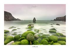O Percebe... (Canconio59) Tags: sea beach rocas verdes galicia españa spain cielo sky green