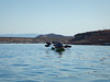 hidden-canyon-kayak-lake-powell-page-arizona-southwest-2862 (Lake Powell Hidden Canyon Kayak) Tags: kayaking arizona kayakinglakepowell lakepowellkayak paddling hiddencanyonkayak hiddencanyon slotcanyon southwest kayak lakepowell glencanyon page utah glencanyonnationalrecreationarea watersport guidedtour kayakingtour seakayakingtour seakayakinglakepowell arizonahiking arizonakayaking utahhiking utahkayaking recreationarea nationalmonument coloradoriver antelopecanyon gavinparsons zacmcculloch