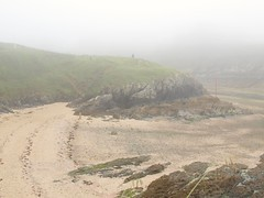 Nebel und Ebbe (ISOZPHOTO) Tags: frankreich france bretagne sea strand beach nebel fog misty foggy nebelig küste coast vacation travel reise urlaub olympus zuiko e520 18180 isoz composition superb oly dslr spiegelreflex ft fourthirds 43 mist 2018 mzuiko dahouet dahouët holiday europe europa coastline atlantique atlantic atlantik isozphoto meer evolt ferien