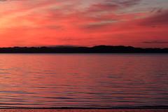 Sunset at Manly Beach, Manly, Auckland (matthewburden) Tags: canon sunset beachlife newzealand auckland