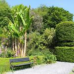 Banana Tree bench thumbnail