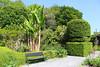 Banana Tree bench (JulieK (thanks for 6 million views)) Tags: kilmokeacountrymanorgardens bench hbm trees htmt hedge touristattraction wexford ireland irish canoneos100d green bananatree lush summer