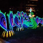 Chinese Lights Festival in Philadelphia thumbnail