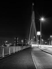 Erasmusbrug ( Rotterdam ) (vanregemoorter) Tags: bridge brug rotterdam holland monochrome cityscape city blackandwhite night nuit route ville