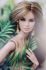 IMG_9884 (Evgenia Ariel) Tags: erin fullspeed erinsalston fashion royalty doll dolls fashiondolls fashionroyalty