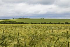 Wilton Windmill, Marlborough (THE NUTTY PHOTOGRAPHER) Tags: wiltonwindmill northwessex crops wiltshire