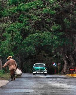Beautiful #nature in #vinales #viñales #pinardelrio #Cuba #lonelyplanet #travel #Bestintravel #cubatravel #unesco #photography #VisitCuba #wanderlust #ecotour #Tourism #kuba #holidays #travelCuba #havana #havanna  www.vinales-tours.com