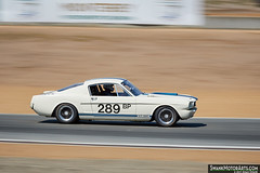 1966 Shelby GT350 (autoidiodyssey) Tags: 2017rolexmontereymotorsportsreunion rmmr montereyhistorics rolexmontereymotorsportsreunion 1966 shelby gt350 tomfry salinas ca usa