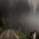 Nebel in den Bergen thumbnail