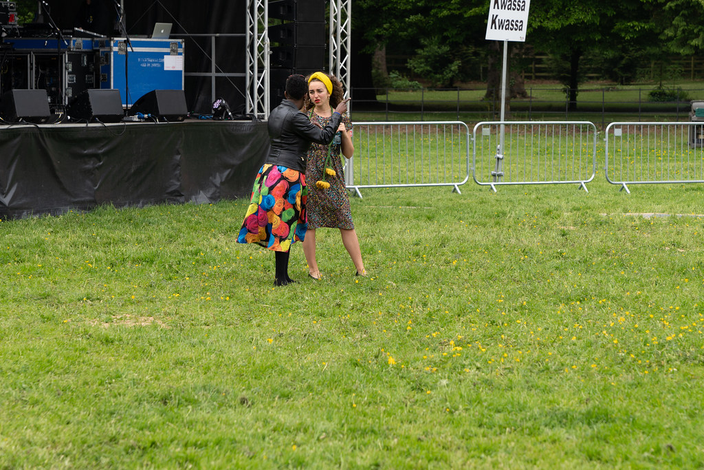 AFRICA DAY 2018 IN DUBLIN [FARMLEIGH HOUSE IN PHOENIX PARK]-140641