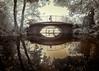 Over and under the Bridge (Adventures in Infrared) (Torsten Reimer) Tags: olympusepl5 bride europa wasser switzerland spiegelungen lake bäume zürich zurich infrared schweiz trees reflektionen walking people bicycles reflections europe water infrarot ch