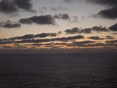 "A bord du ""MSC Fantasia"" (Vincentello) Tags: msc fantasia navire ship"