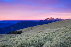"合歡北峰小溪營地 -9 (billlushana1) Tags: sony sonya7r sonyalpha sonyphotography canon ef1740mmf4lusm taiwan taiwantop100peaks 100peaksoftaiwan mountain mountaintrail hehuanshan thecentralrange taroko tarokonationalpark nationalpark cloud mountain"" sunset sunrise travel trekking 仁愛鄉 臺灣省 台灣 tw 太魯閣國家公園 太魯閣 合歡山 合歡北峰 小溪營地"