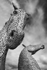 A Kelpie is looking at me! (diegolopmon) Tags: kelpies scotland blackwhite atmosphere wild horse horses edimburg monument sculpture travel