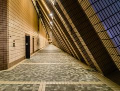 Abandoned Walkway - Hongkong 157/188 (*Capture the Moment*) Tags: 2017 culturalcenter gang hongkong nacht nachtaufnahmen night nightshot sonya7m2 sonya7mii sonya7mark2 sonya7ii sonyfe2470mmf4zaoss sonyilce7m2 walkway