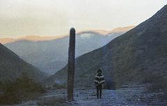 Um fim de tarde e o sentimento absurdo da vida (Tuane Eggers) Tags: absurdo sentimento vida cactus argentina jujuy montanhas lufebollini tuaneeggers 35mm film