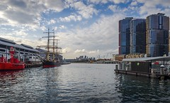 View of Sydney Wharf on Pyrmont Bay (Victor Wong (sfe-co2)) Tags: skyscraper architecture australia australian barangaroo bay building business city closeup cloud cockle design destination ferry fleet front harbor heritage history iconic lights newsouthwales noticeboard nsw outdoors pavilion pier portsign pyrmont quay signage signboard sky sydney symbol tall terminal terrace tourism tower town transportation travel water waterfront wharf white windows view ship boat sea