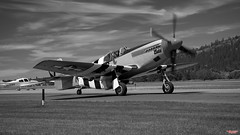 North American P-51 Mustang (MBates Foto) Tags: aircraft availablelight aviation blackandwhite daylight existinglight feltsfield fighter flight monochrome mustang nikkorlens nikon nikond810 nikonfx outdoors p51 pilot plane spokane washington unitedstates 99212