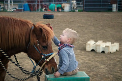 A Boy's Best Friend (Ashlee Zotter) Tags: pony horse champ brown arena friend friends best pals ranch pet hug cuddle ride cowboy toddler baby boy practice texas california horses ponies love friendship companion fulltime fulltiming rv travel vacation photography photograph portrait life living live vanlife bucketlist bucket list bold camp camping rubbertramp gypsy nomad roam adventure wanderlust wander digital art buslife open road wilderness culture lifestyle explore discover roadtrip homeschool roadschool worldschool vagabond canon rebel t6i eos outside outdoors