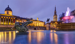 Trafalgar Square, London, UK (AdelheidS Photography) Tags: adelheidsphotography adelheidsmitt adelheidspictures england engeland unitedkingdom uk greatbritain britain london bluehour blue building fountain historic museum statue churchtower church citylights cityscape water evening canoneos6d irix