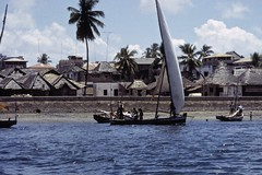 Dhow boat with the townscape of Lamu in Kenya (yhila) Tags: townscape transport lamu kenya