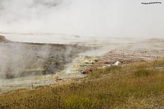 Vapores de Volcan - volcano vapors 3 (pniselba) Tags: yellowstone yellowstonenationalpark parquenacional parquenacionalyellowstone nationalpark geyser geysir geiser géiser crater volcan volcanic volcanico volcano usa eeuu wyoming