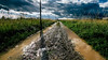 Après la pluie (Meculda) Tags: pluie rain france route champs eau water reflet lumière grandangle nikon