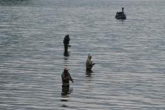 Fishermen (varnaboy) Tags: nikko japan trip fishermen fishing lake water chuzenjilake
