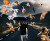 It's Raining Cats and Dogs (unDaily Power) Tags: conceptualphotography conceptualportraitphotography composite rainingcatsanddogs idioms idiom photoshop portrait photomanipulation cats dogs animals raining umbrella unsplash