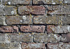 some bricks are harder than others (conall..) Tags: bricks weathered differential lichens textured surface wall outside stjohns point lighthouse