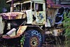 Abandoned (thomasgorman1) Tags: nikon graffiti old vehicle hawaii street plants kona kailua rusted abandoned streetshots streetphotos engine