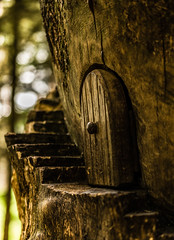 Doorway to another place.. (Emma Yeardley) Tags: fairydoor doorway door tree forest cannockchase nature bokeh dof stairway mini fairieslivehere nikon 40mm nikon40mm minature