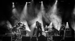 Robert Plant & The Sensational Space Shifters (Andy J Newman) Tags: 2018 festival live bathfestival sony lowlight plant silverefex monochrome bath concert sensationalspaceshifters music blackandwhite robertplant performer