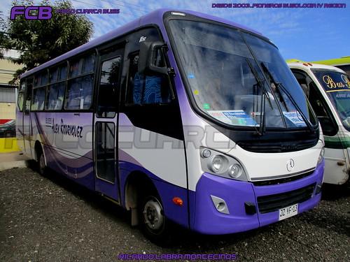 Caio Foz / Mercedes Benz LO 916 / Buses Alex Rodriguez