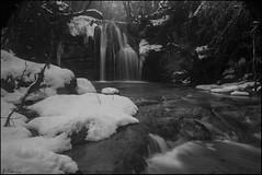 Paisaje invernal. (antoniocamero21) Tags: paisaje foto sony bn invierno nieve vallfogona ripollès girona catalunya bosque